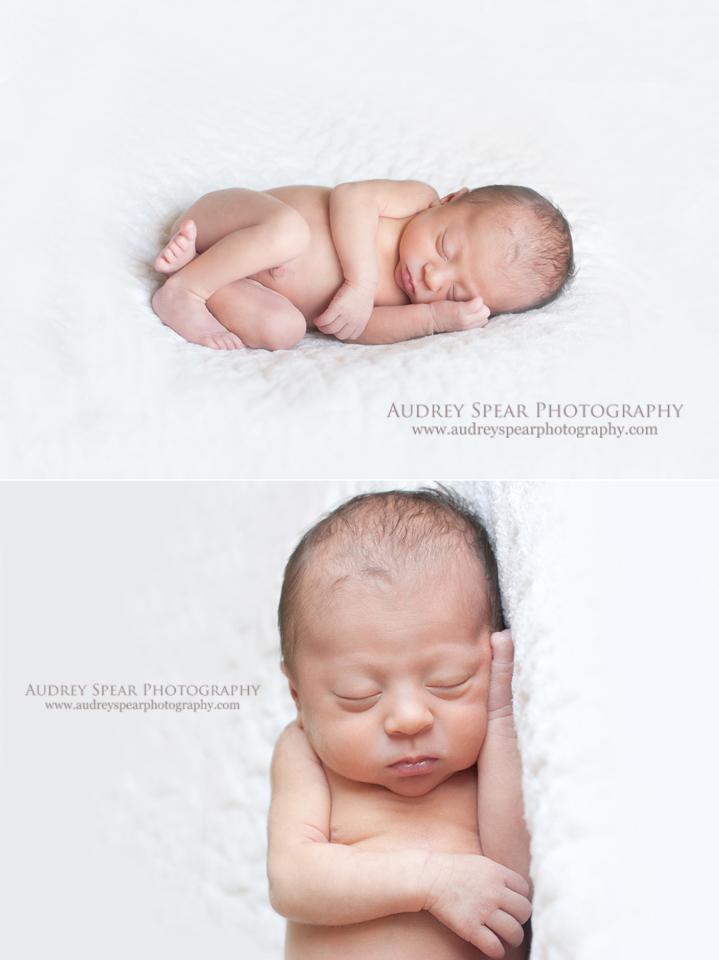 Marin-County-Newborn-Photography