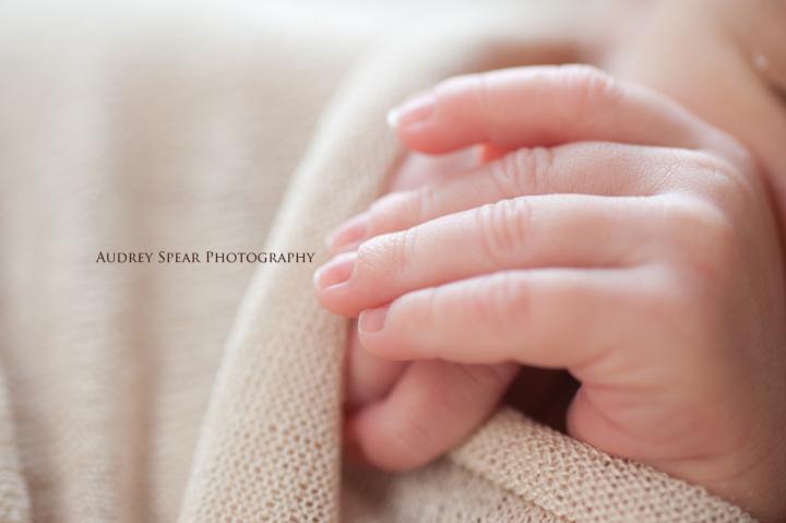 Petaluma Newborn Photographer
