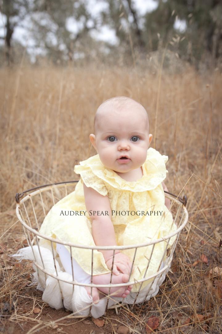Petaluma Baby Photography