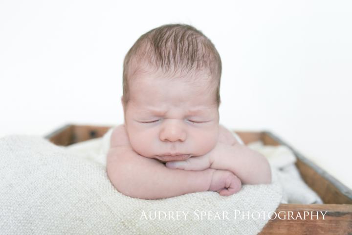 Tiburon-in-home-newborn-Photography