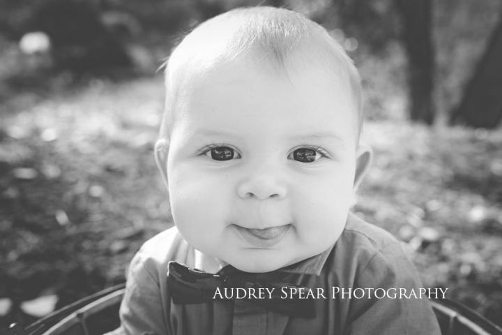 Sonoma-County-Baby-Photographer