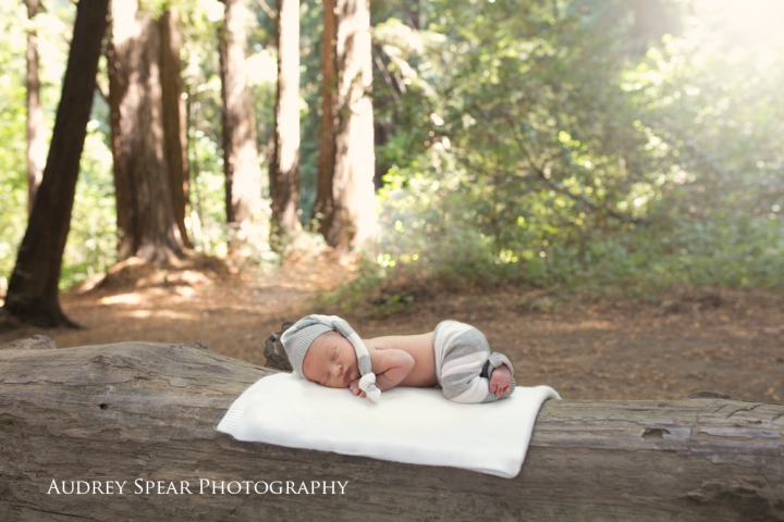 marin_county_outdoor_newborn_photography