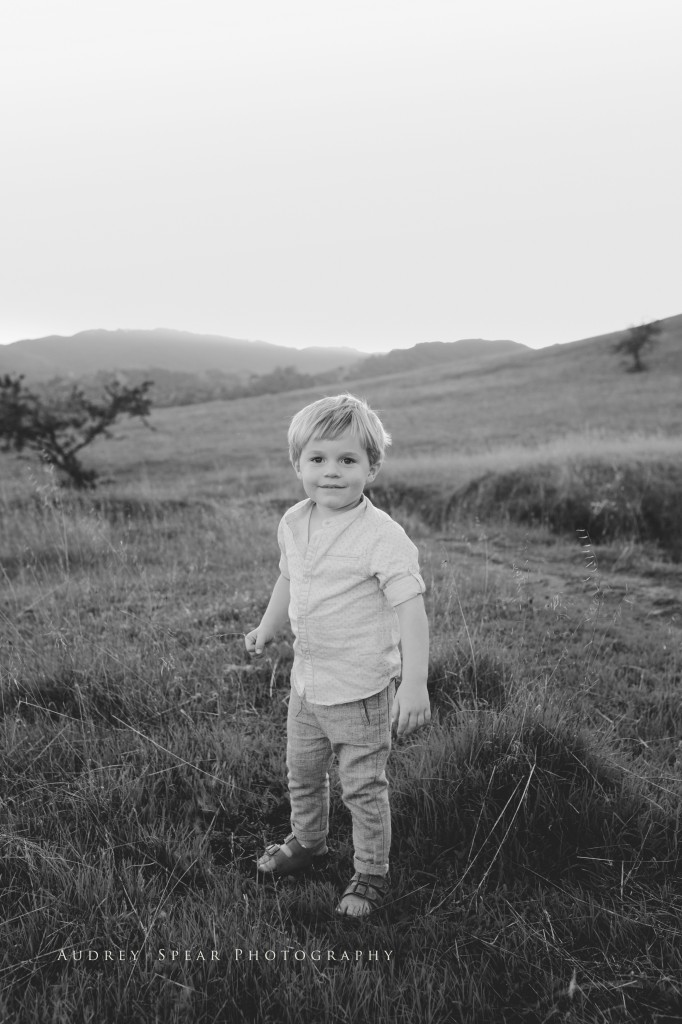 mill_valley_family_photographer