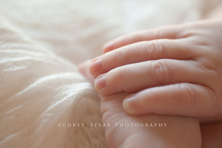 corte_madera_baby_photography